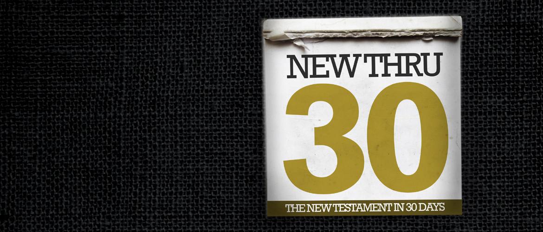 nt30_promo_new copy